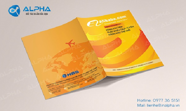 Tự thiết kế catalogue đẹp bằng Word, Photoshop và Illustrator