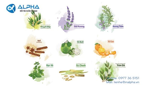 Mẫu thiết kế tem nhãn tinh dầu của Công ty TNHH In Alpha Việt Nam