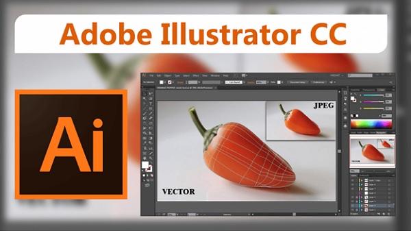 Adobe Illustrator (AI)